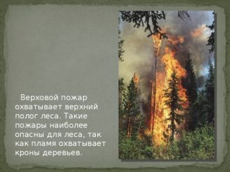 Тип пожара охватывающий кроны деревьев